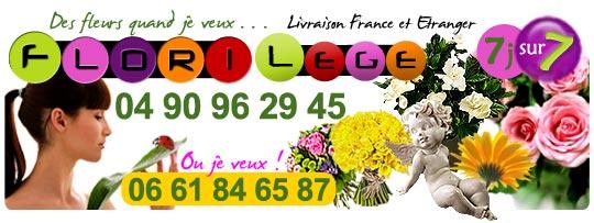 540x203-florilege-2010